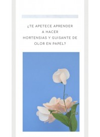 15 de Octubre Taller Flores en Papel: Hortensias y guisantes de olor